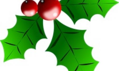 Holly-christmas-image